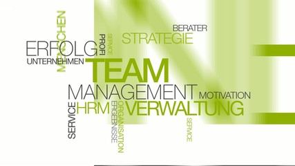 Team management verwaltung beratung wort tag cloud animierte