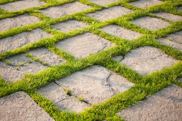 pavimento in giardino