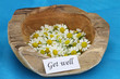 Get well card on teak root bowl with fresh chamomile flowers