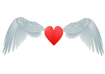 heart and white wings
