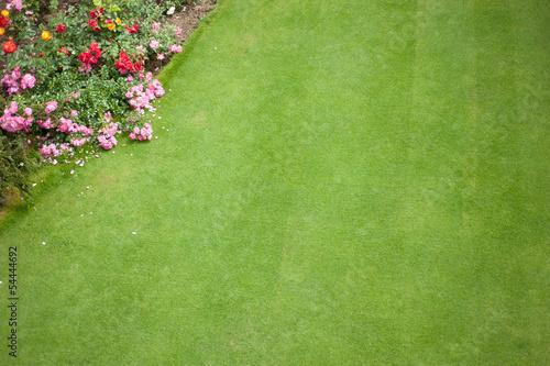 particolare di giardino