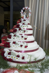 torta grande 2