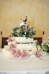 torta rose rosa