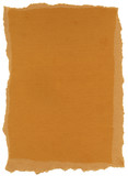 Isolated Fiber Paper Texture - Carrot Orange XXXXL