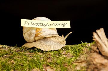 Privatisierung im Schneckentempo