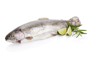 Delicious trout isolated on white.