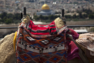 Camel Hump & Dome of the Rock