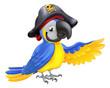 Pirate Parrot Illustration