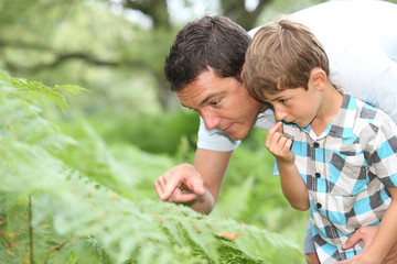 Father and son in forest looking at plants