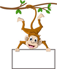 funny monkey cartoon holding blank sign for you design