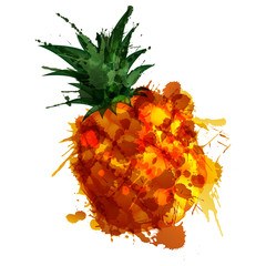 Pineple made of colorful splashes on white background