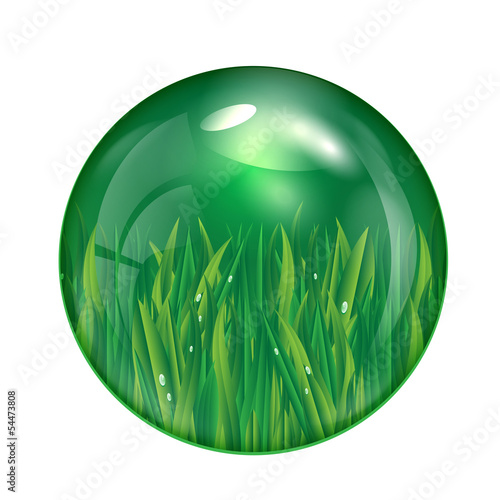 glass ball with green grass isolated on white background.eco ico