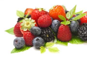 Frutti di bosco - Mixed berries