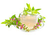 Tea or infusion of Purple lythrum