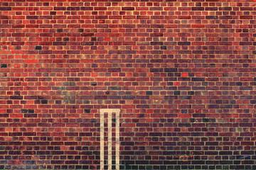 wall cricket