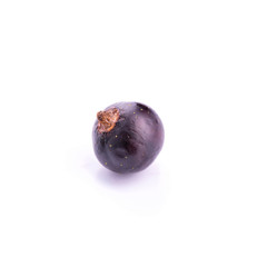 Fresh ripe blackcurrant isolated