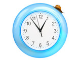 Grape snail climbing on a clock