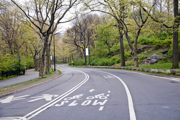 Street in Central park