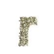 Kleiner Buchstabe r gebildet aus Dollar Banknoten