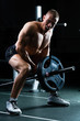 Man at Dumbbell training in gym