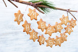 Iced gingerbread cookies hanging off a branch, DIY