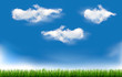 Background with blue sky and grass. Vector.