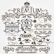 Collection of vector vintage decorative elements for design