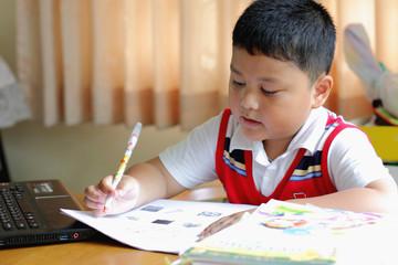The boy work homework carefully.