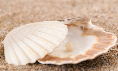 Sea pearl in shells on sand