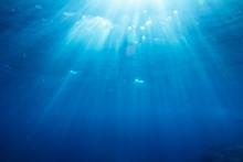 podwodne strzał z promieni słonecznych i ryb w głębokim morzu tropikalnych