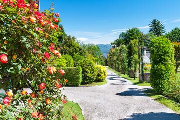 Piece of public gardens of Villa Taranto, Italy