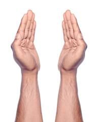 Praying Hand Gesture