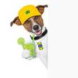 barzil dog