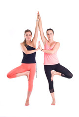 Practicing Yoga exercises in group / Tree Pose - Vrksasana