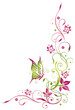 Blume, Ranke, Sommer, Schmetterling, grün, pink