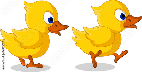 cute two little duck cartoon walking