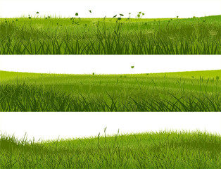 Banner of abstract meadow grass.