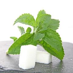 Stévia remplaçant le sucre
