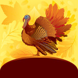 Decorative card with turkey