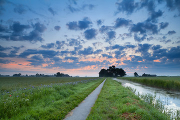 bicycle road and canal at sunrise
