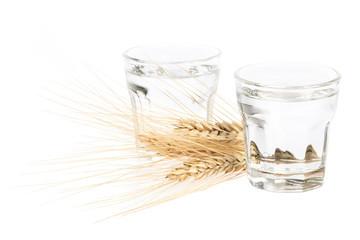 2 Gläser Korn - Schnaps auf weißem Hintergrund