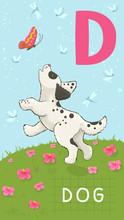 Lettre D, ABC des animaux