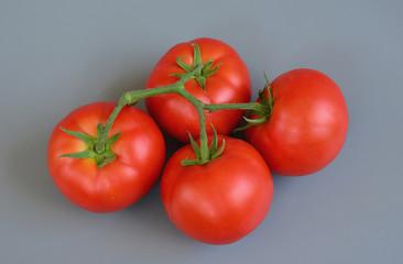 Tomato 22