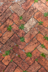 Old Red Brick Herringbone