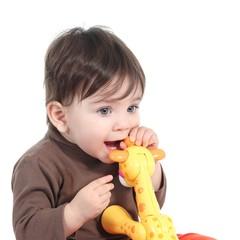 Baby girl biting an animal toy