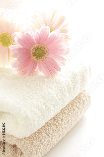 pastel pink gerbera on towel for interior goods image