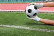 Goalkeeper's hands catching soccer ball over the line of goal wi