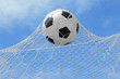 Soccer ball shoot to goal in ant view