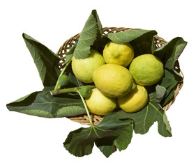 Cesta di limoni con foglie di fico