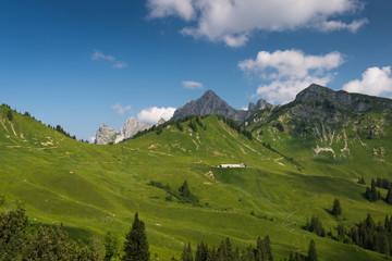alpine cabin at nice green mountain chain in summer